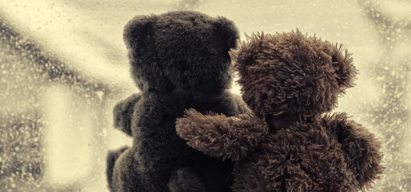 Hug a Bear Day