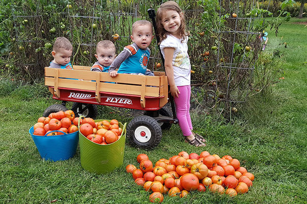 National Farm Safety Day for Kids