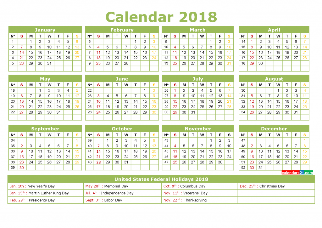 Full Year Printable Calendar 2018 with Holidays in US