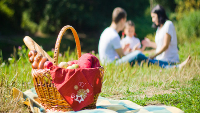 International Picnic Day