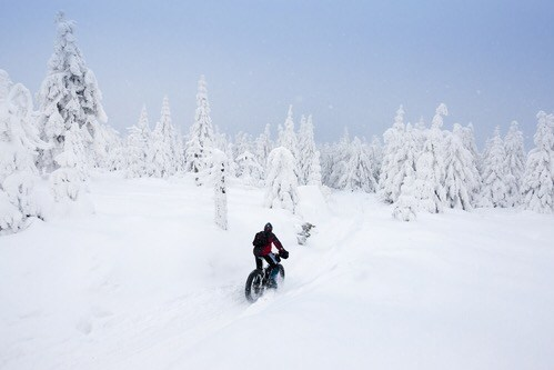 International Winter Bike to Work Day