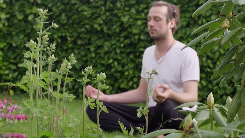 National Meditation Day