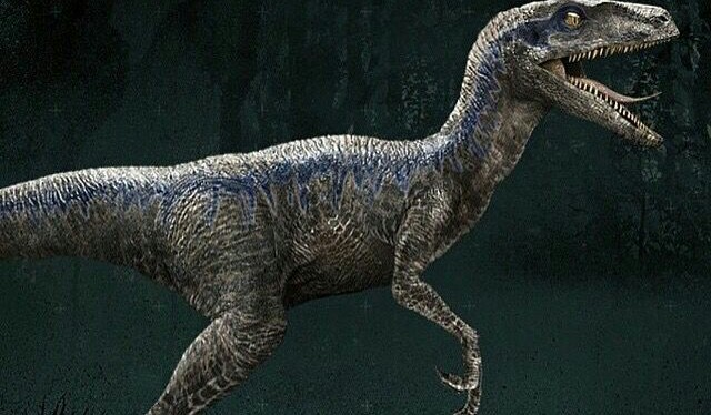 National Velociraptor Awareness Day