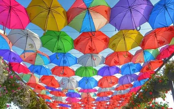 Umbrella Day