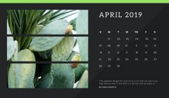 black Photo collage Free April 2019 Calendar Template