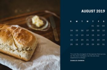 deep colors simple August 2019 Free Photo Calendar Template