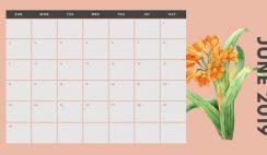 June 2019 Calendar Template multicoloured pastel flowers simple