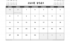 Printable June 2021 Calendar UK