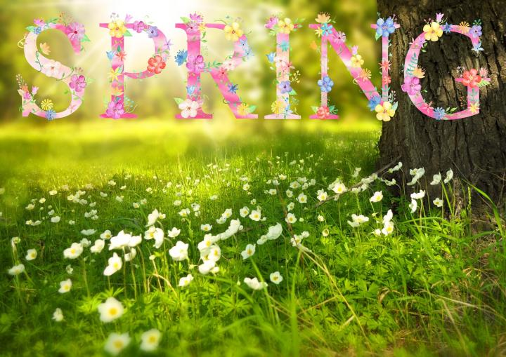 When is The First Day of- Spring ( March Equinox)